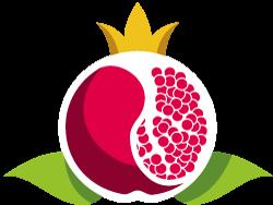 nove-logo-2020-2
